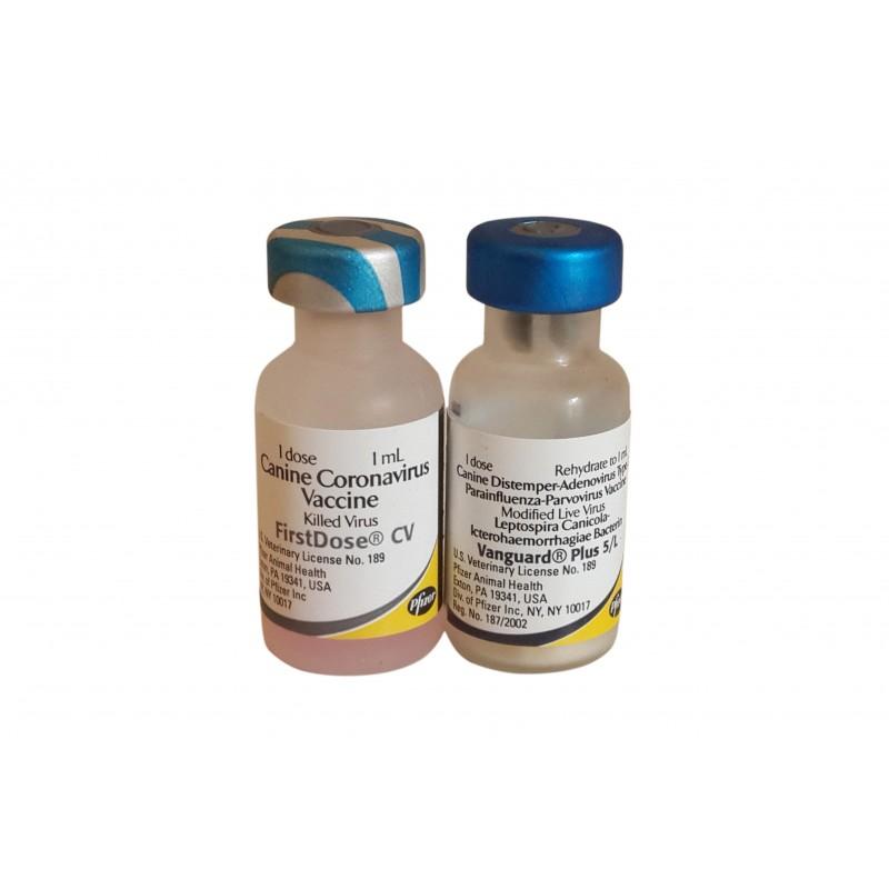 تطعيمات الكلاب بجميع انواعها : شكل تطعيم الكلاب الثماني
