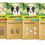 جرعة الديدان للكلاب .. علاج ديدان الكلاب عن طريق الدرونتال