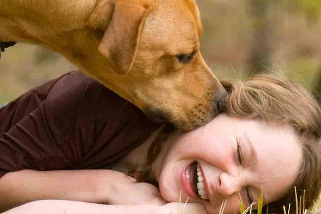 تستطيع الكلاب الشعور باصحابها في كل لحظة وتبدأ في التصرف بناء على ذلك