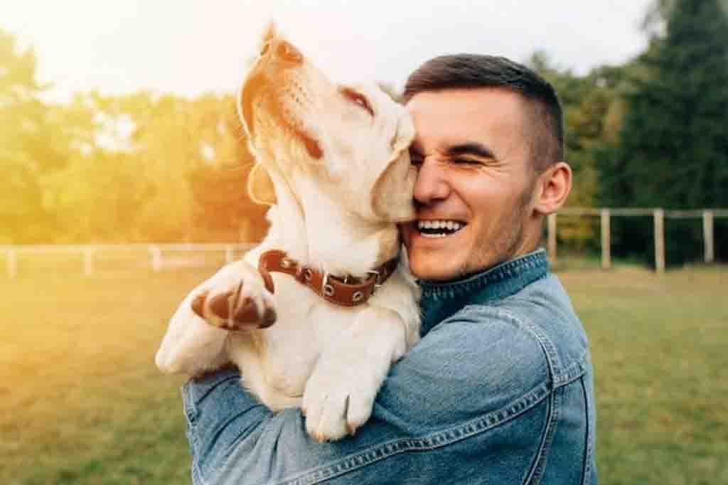 سيفهم كلبك بسهولة متى ستذهب معه في جولة خارج المنزل و متى ستقدم له وجبة طعام مفضلة