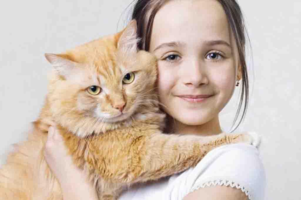كيف تعرف إذا ما كانت قطتك تحب العناق أم لا