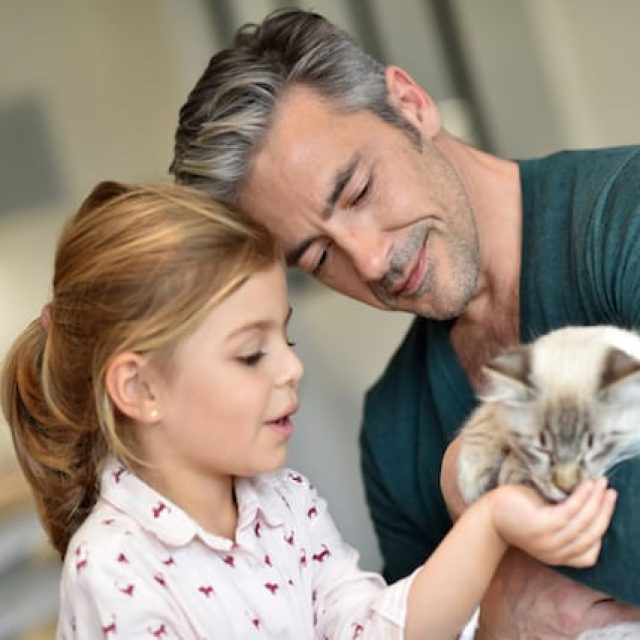 هل القطط تسبب العقم للبنات ؟ كل شئ عن داء القطط للمرأة الحامل