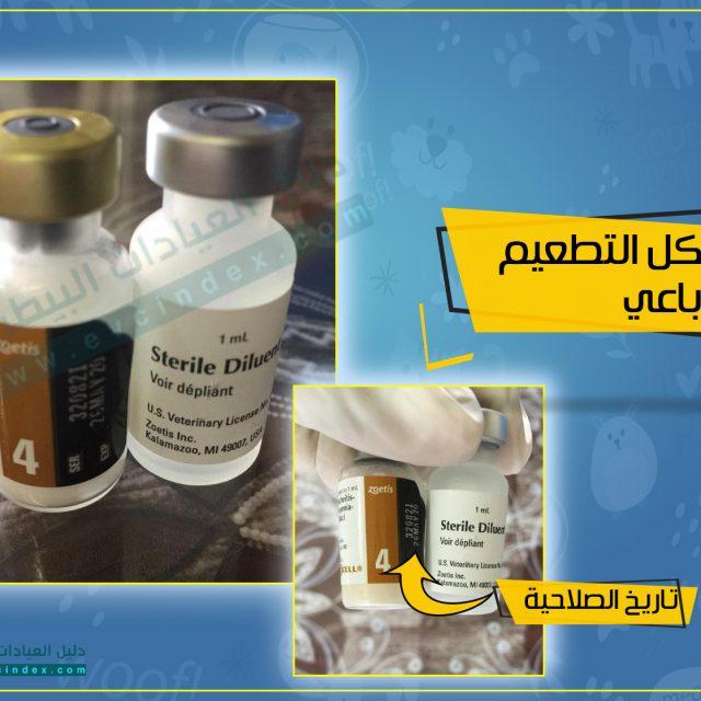 اسعار تطعيمات القطط الثلاثي و الرباعي 2020 في مصر