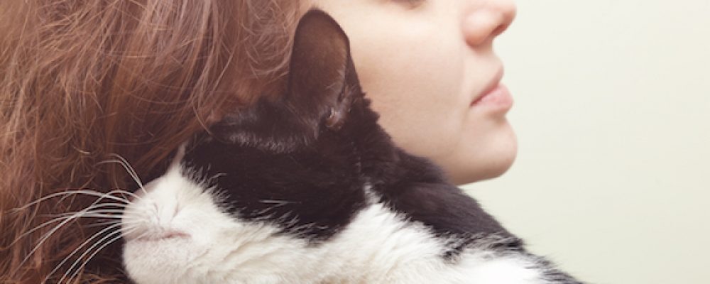 أخطاء تربية القطط : يفعلها الكثيرون فانتبه وتجنبها
