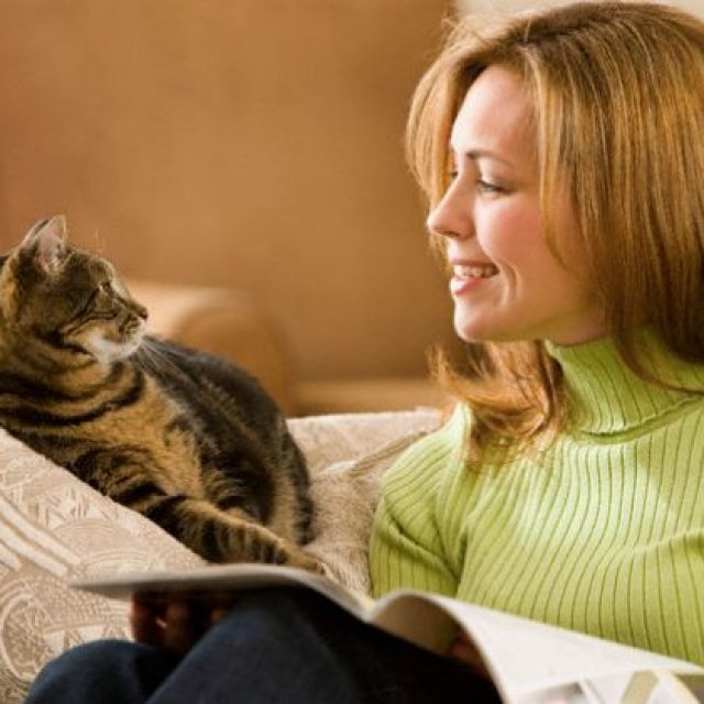 هل يعرف القط صاحبه ؟ وهل تعرف القطط اولادها ؟