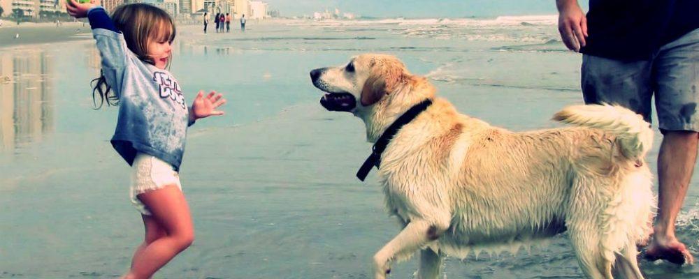 علاج الخوف من الكلاب عند الأطفال