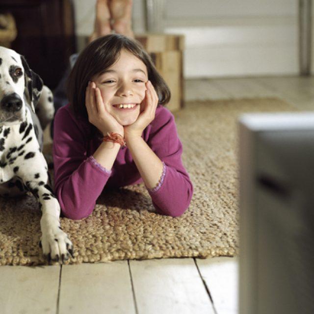 أفضل 5 أفلام يمكنك مشاهدتها مع كلبك