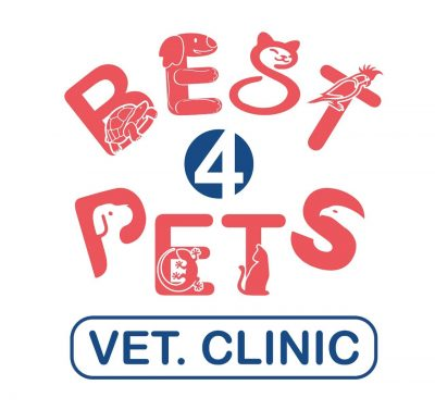 عيادة Best 4 pets البيطرية لعلاج الطيور والزواحف والحيوانات الأليفة