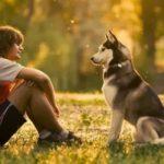 كيف تجعل كلبك يحبك في خطوات بسيطة