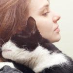 تساقط شعر القطط أحد أكبر المشاكل التي تواجه مربي القطط