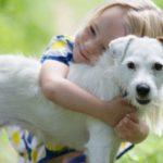 كم سنة يعيش الكلب ؟ معلومات عن أعمار الكلاب