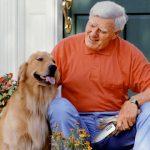 7 علامات تدل على تقدم الكلاب في العمر