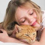 هل تحب القطط أن يعانقها أحد